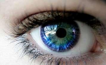Глаз — орган зрения человека.