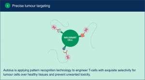 autolus 04 300x165 - Autolus: CAR-терапия следующего поколения против рака