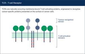 autolus tcr 300x190 - Autolus: CAR-терапия следующего поколения против рака
