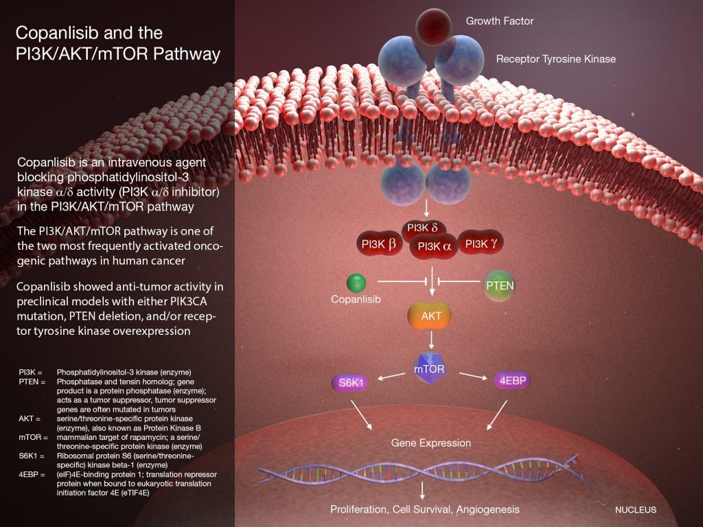 «Аликвопа»: новое лекарство против рецидивирующей фолликулярной лимфомы