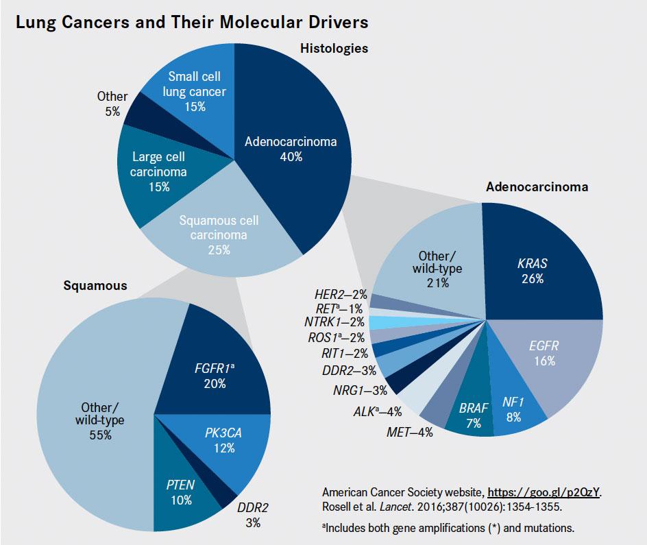 AbbVie и Bristol-Myers Squibb: вместе против рака легких