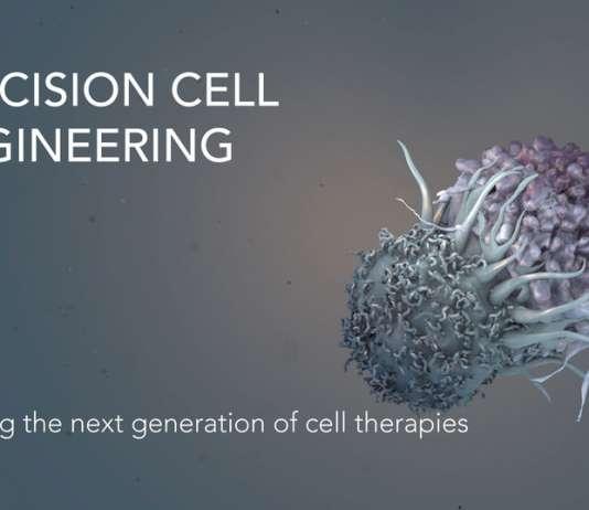 «Селл дизайн лабс» (Cell Design Labs).