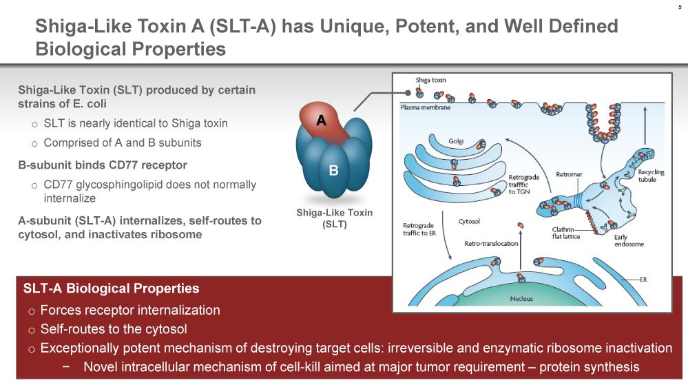 etb 01 - Takeda понравились рекомбинантные токсиновые тела