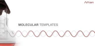 «Молекьюла темплейтс» (Molecular Templates).