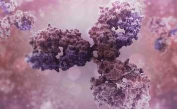 «Синтимьюн» (Syntimmune).