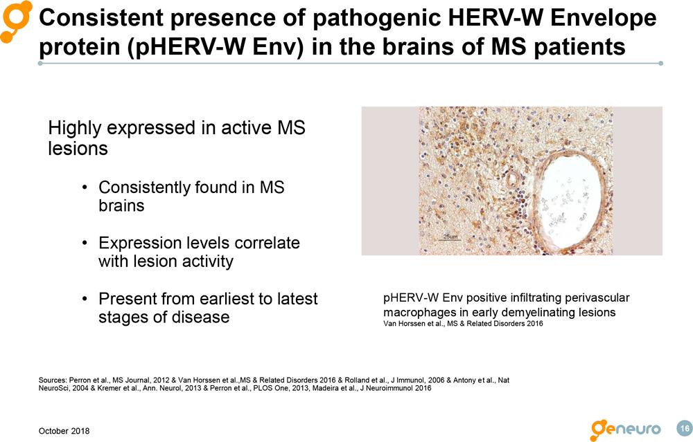 Рассеянный склероз и эндогенные вирусы: новый терапевтический подход