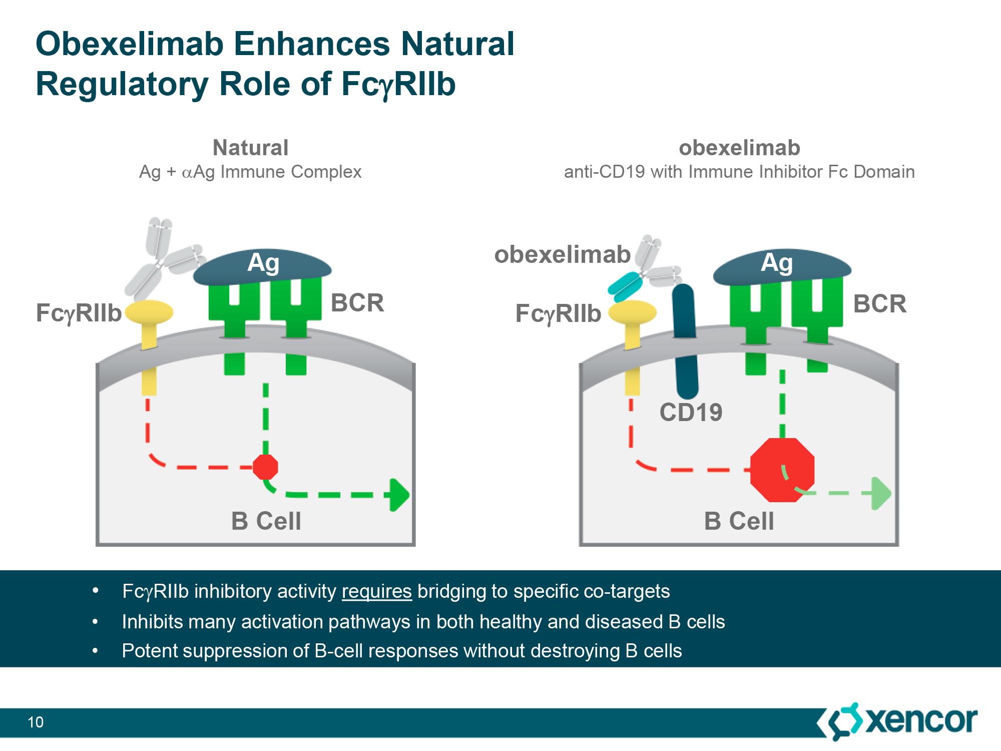 obexelimab moa - Roche изучит лечение рака при помощи интерлейкина 15