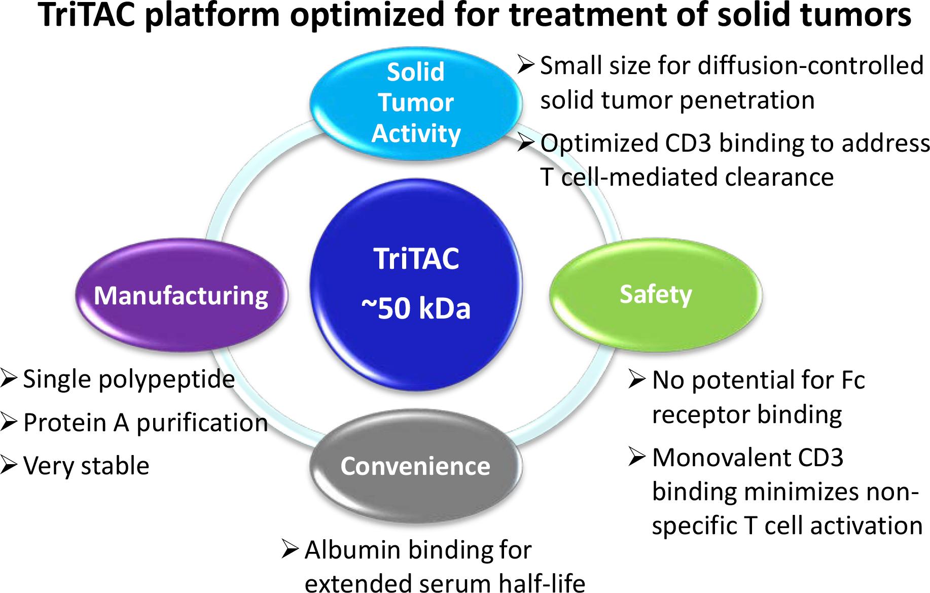 tritac 03 - Harpoon Therapeutics: новая модальность иммуноонкологического лечения