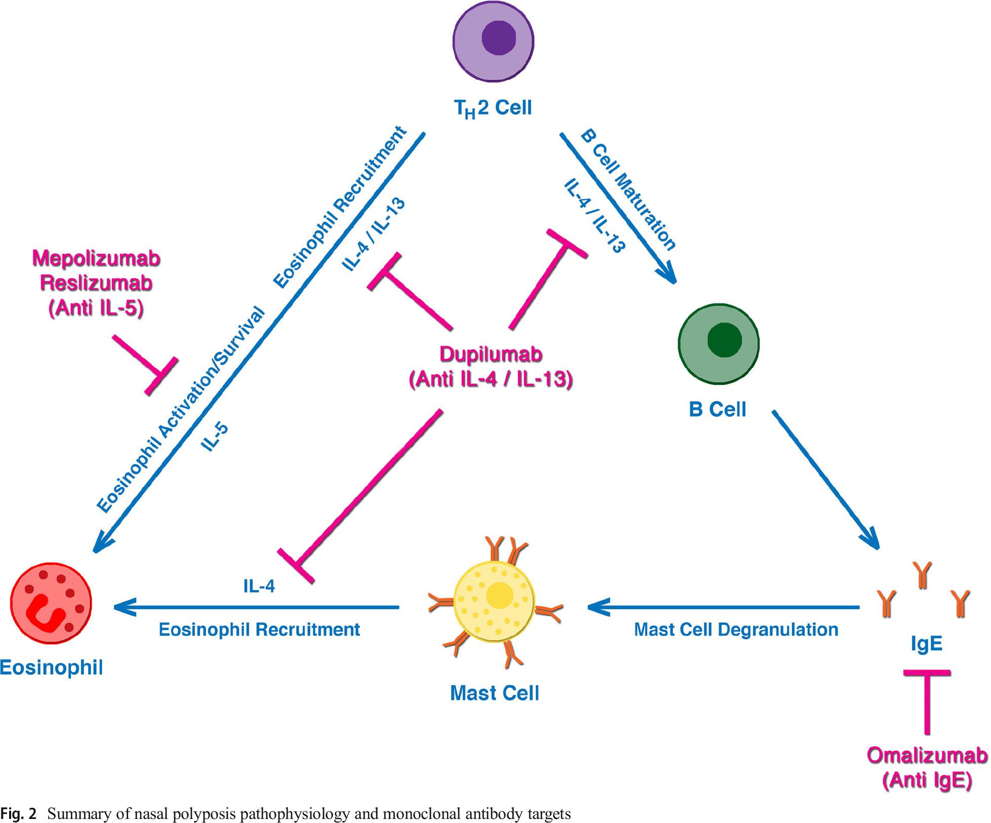 nasal polyposis - «Дупиксент»: эффективное лечение тяжелого полипозного риносинусита