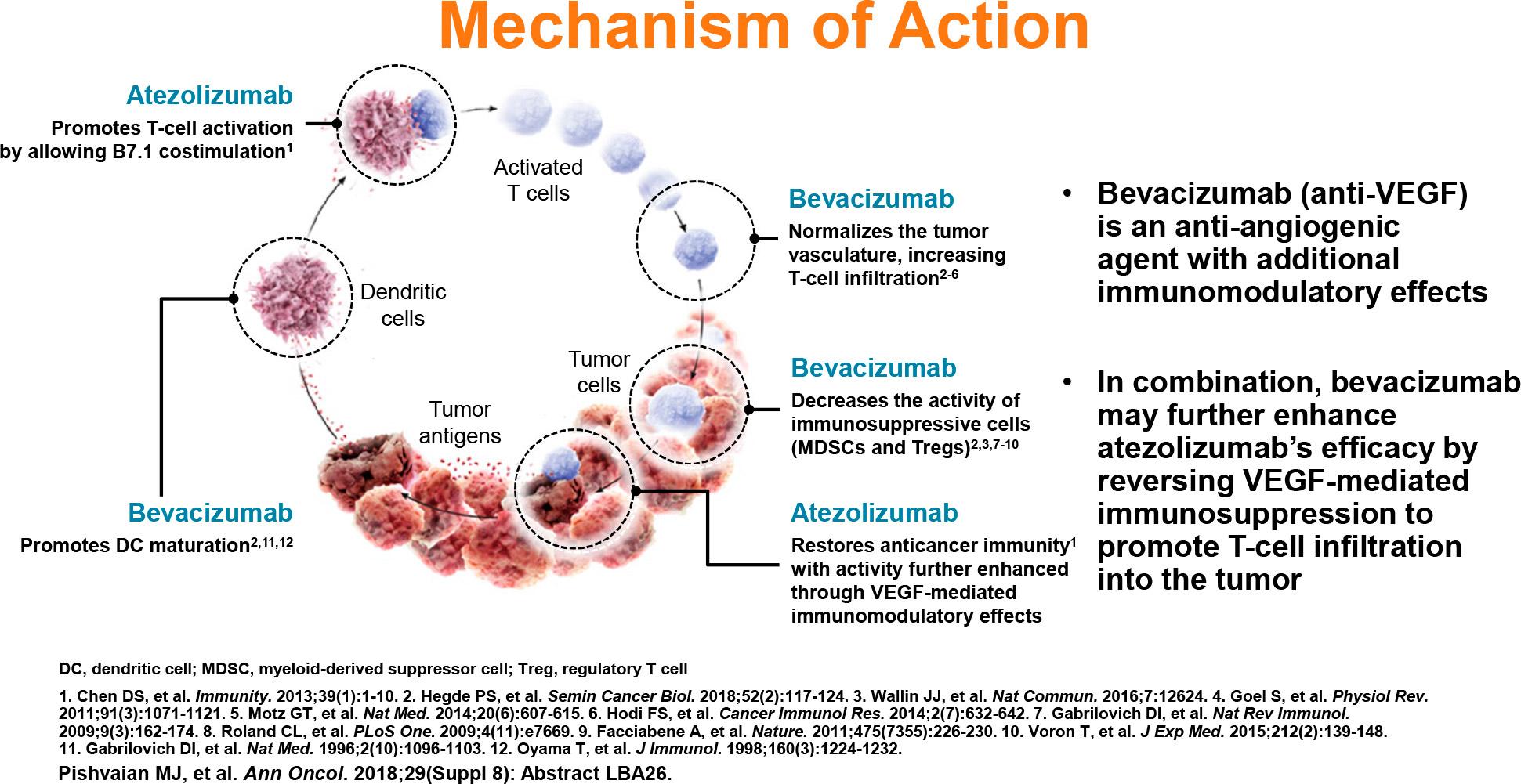 bevacizumab plus atezolizumab moa - «Тецентрик» плюс «Авастин»: иммуноонкологическое лечение гепатоцеллюлярной карциномы