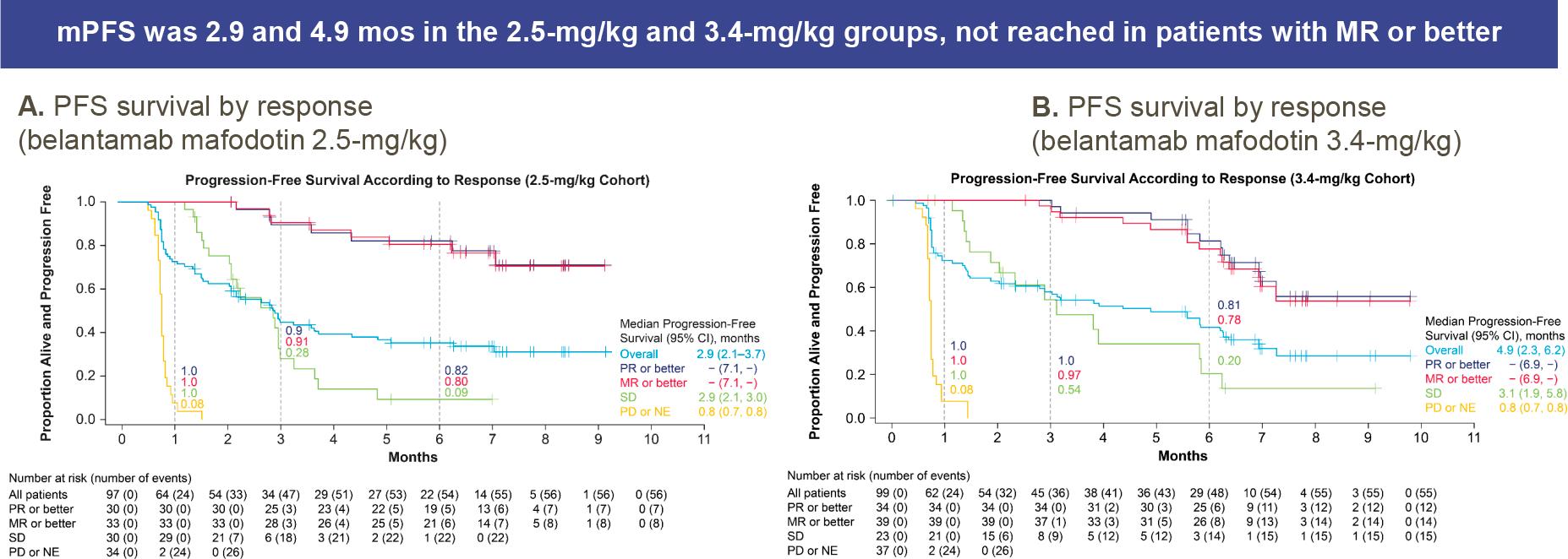 belantamab mafodotin nct03525678 results 03 - Белантамаб мафодотин для лечения множественной миеломы