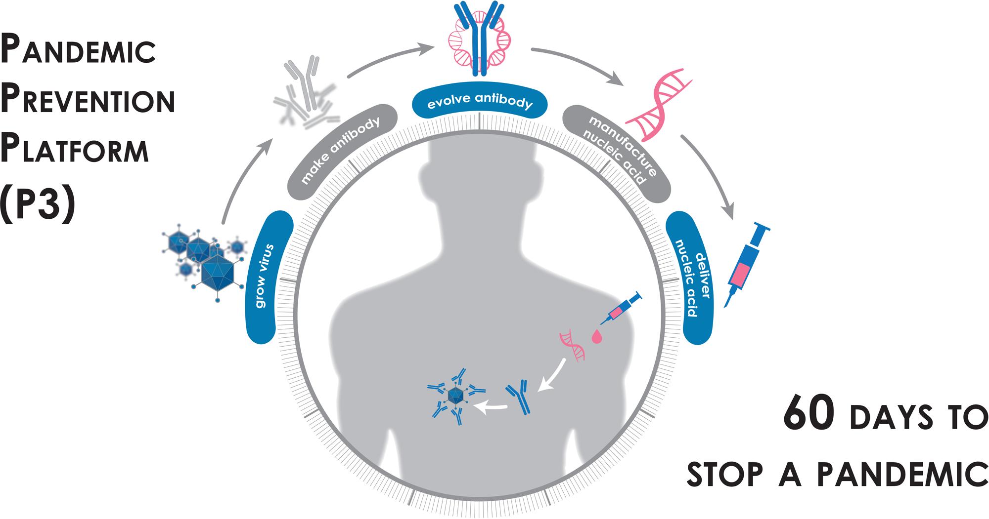 pandemic prevention platform p3 - Новый коронавирус SARS-CoV-2: все лекарства и вакцины против инфекции COVID-19. Самый полный и подробный обзор в мире