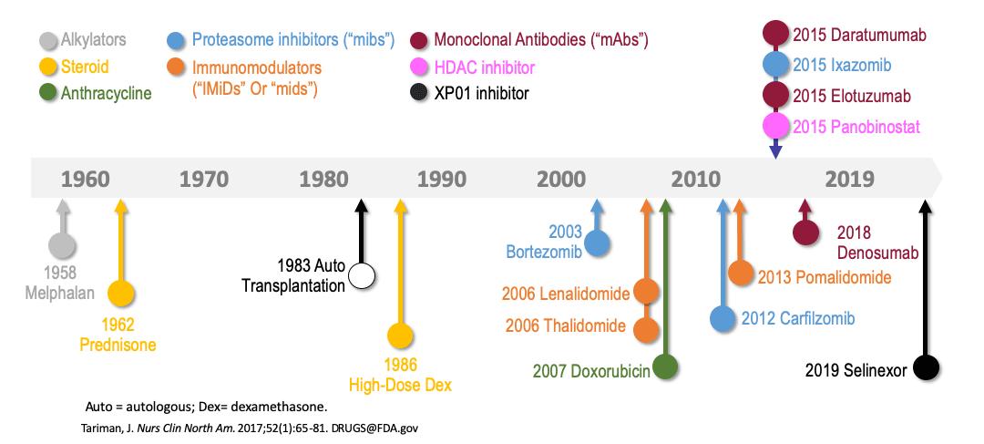 multiple myeloma drugs timeline - «Сарклиса»: новое лекарство против множественной миеломы