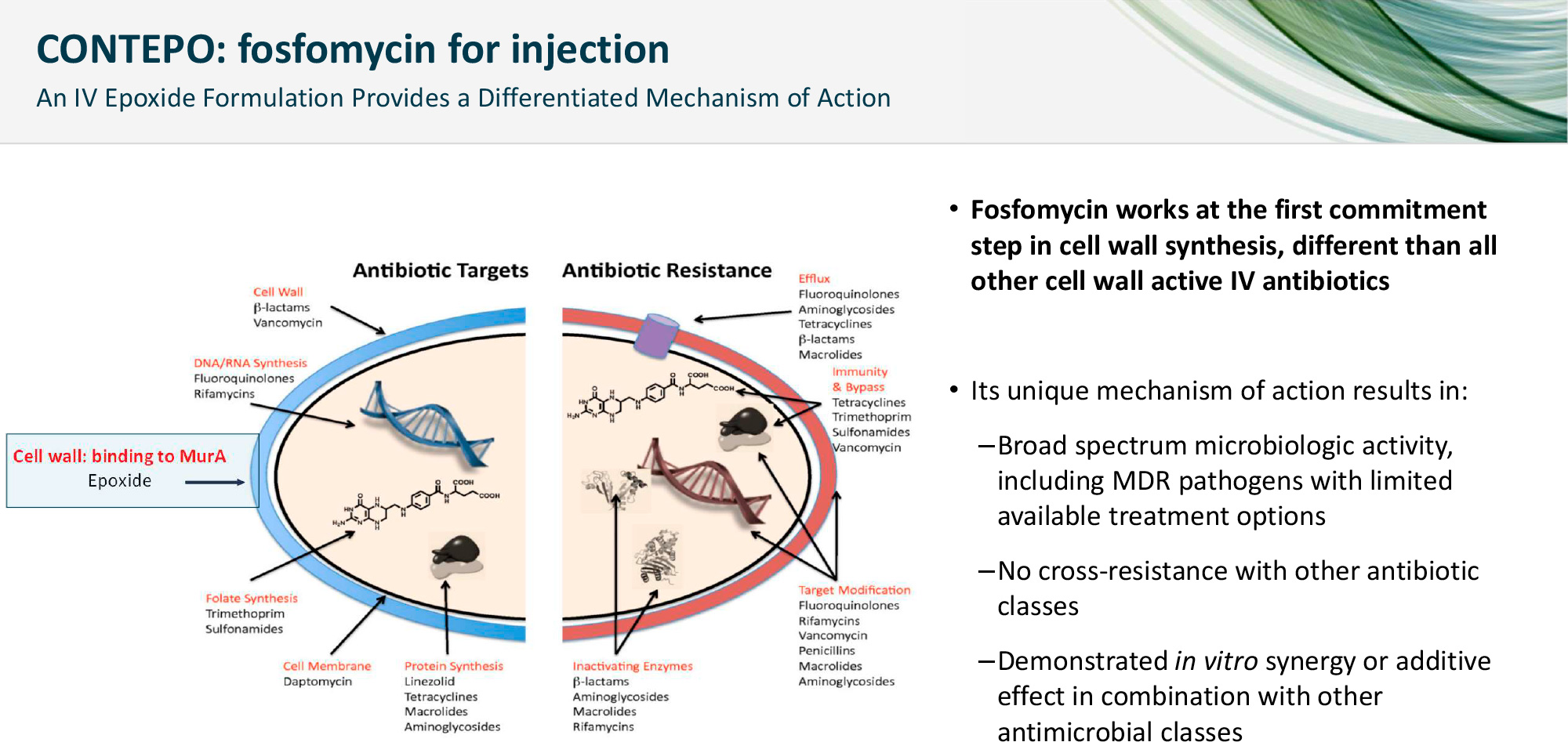 fosfomycin iv moa - Антибиотик фосфомицин опять неугоден