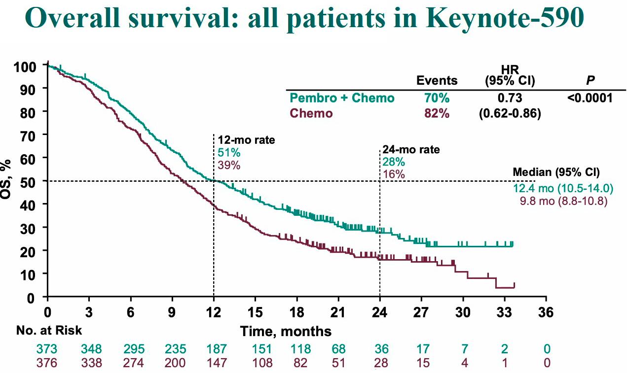 keynote 590 results - «Китруда» и «Опдиво»: иммуноонкологическое лечение рака желудка или пищевода