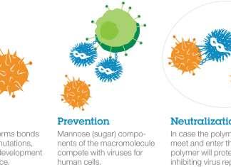 Три компонента макромолекулы Голубого гиганта.
